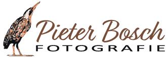 logo_pieterbosch.jpg